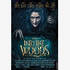Film: Into the Woods